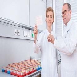 """Universidade alemã descobre conduta """"grave"""" por pesquisador"""