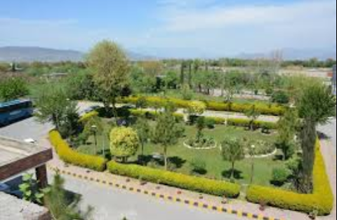Hospitals and care centers in haripur , KPK