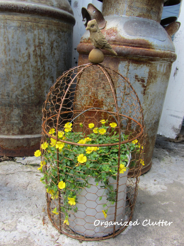 Rusty Wire Cloche Over Pot of Gold Dust Mercardonia www.organizedclutterqueen.blogspot.com