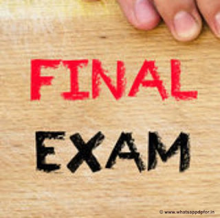 Final-exam-whatsapp-dp