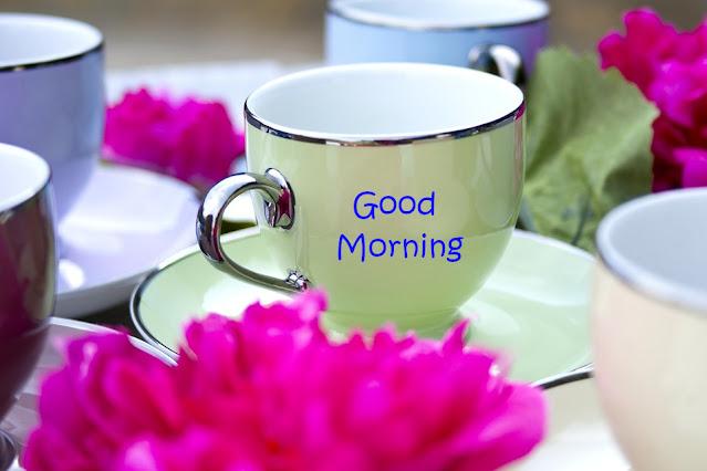 Nice Day Good Morning