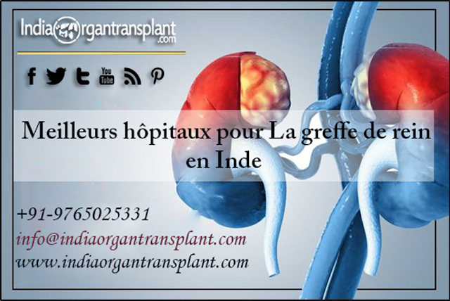 https://www.indiaorgantransplant.com/kidney-transplant-cost-top-hospitals-best-surgeons-india-french.php