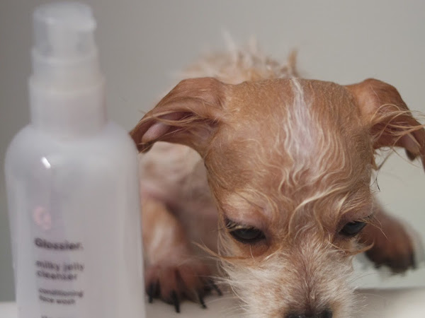 OFF LABEL USE: Stock up on the Glossier Black Friday Sale Milky Jelly Dog Bath
