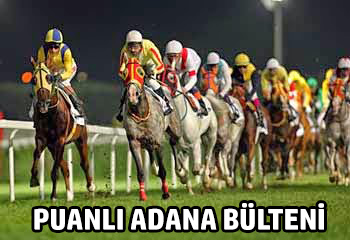Puanlı Adana Bülteni, Programı