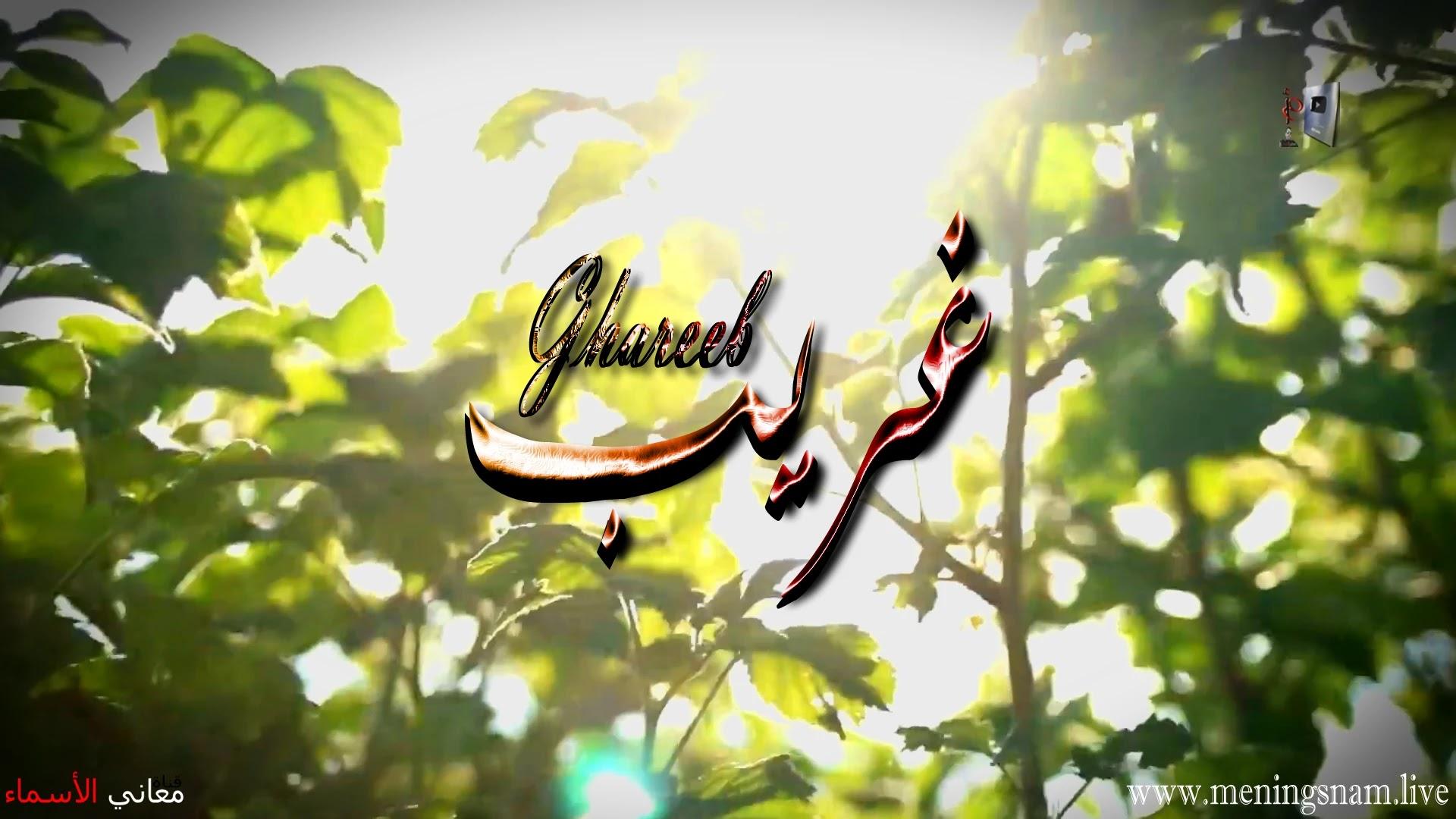 معنى اسم غريب وصفات حامل هذا الاسم Ghareb