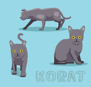 Korat illustration by bullet_chained, via Adobe Stock