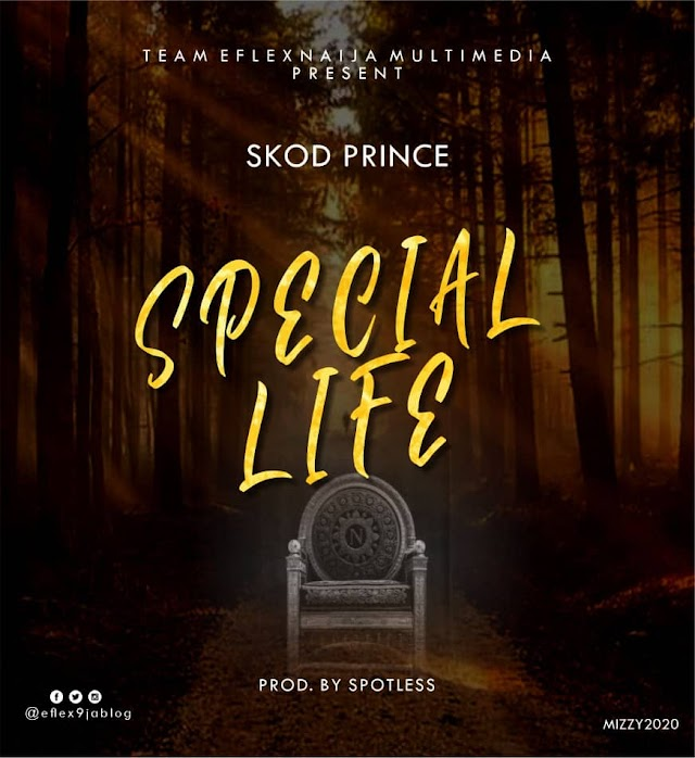 [Download MP3]: Skod Prince - Special Life (Prod. Spotless) ||DJ PIKOLO MIX PROMO