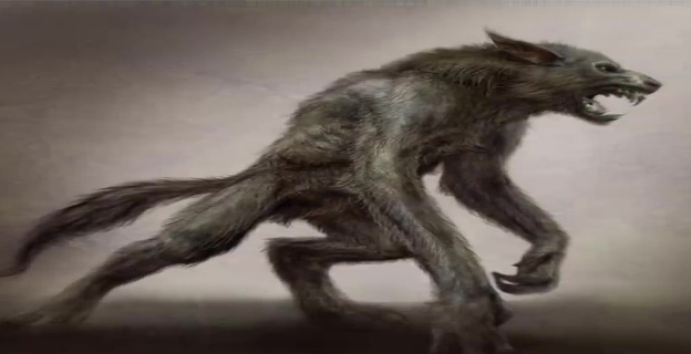 Mythical Creatures Werewolf, GlobalCulture, Wolf human Shapeshifter