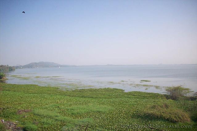 Kolavai Lake Birding in Chennai spots