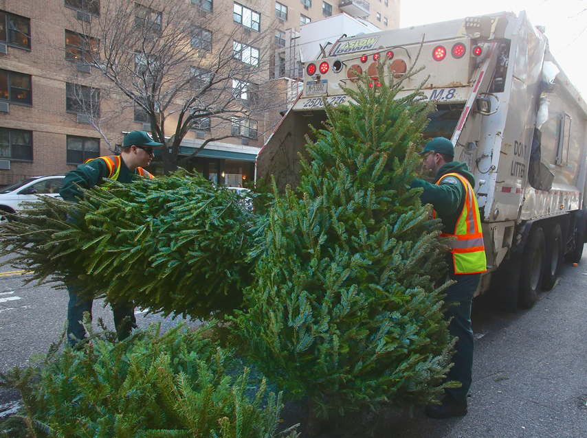 KARMABrooklyn Blog: CHRISTMAS TREE DISPOSAL METHODS: AT