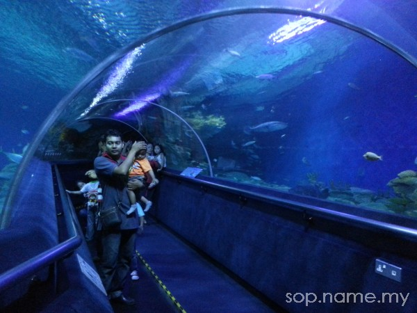 Aktiviti cuti sekolah - melawat Aquaria KLCC 2013