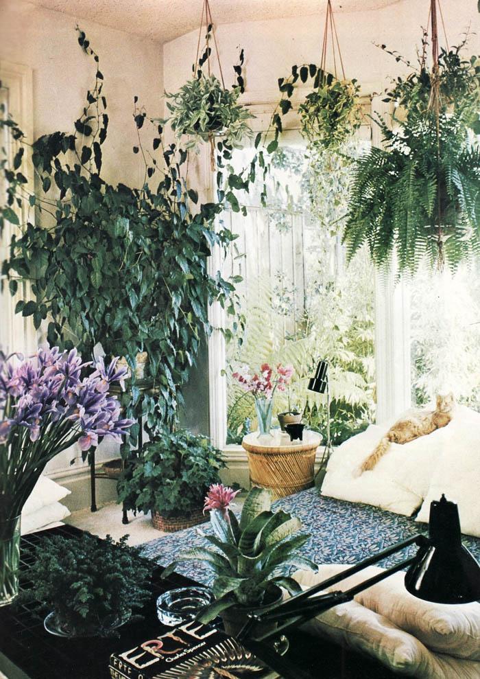 Boho Aesthetic Bedroom Decor
