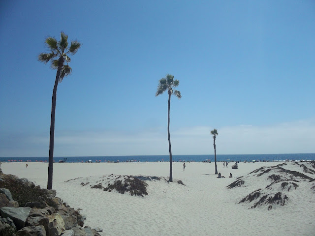 USA-laguna-beach-plage-vacances