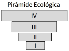 Pirâmide Ecológica