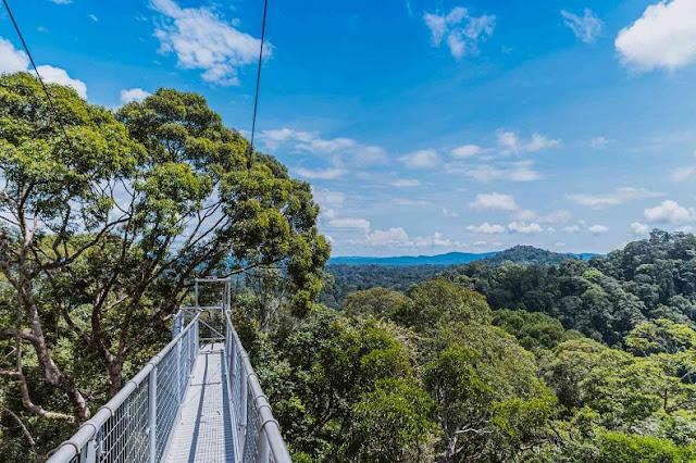 Công viên quốc gia Ulu Temburong là điểm dừng chân hấp dẫn không thể bỏ qua tại đất nước này. Công viên nằm trong khu vực tập trung những khu rừng nguyên sinh chưa được khai phá. Tạp chí du lịch nổi tiếng The Culture Trip từng nhận định nhờ chính sách bảo vệ của Quốc vương Brunei trong những năm 1990 đã ngăn chặn nạn phá rừng, bảo tồn hầu hết khu rừng nhiệt đới nguyên thủy.