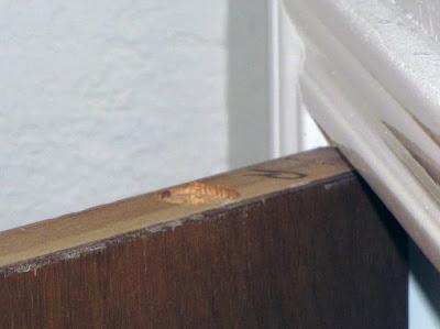 Тайник в двери. Процесс изготовления фото 18