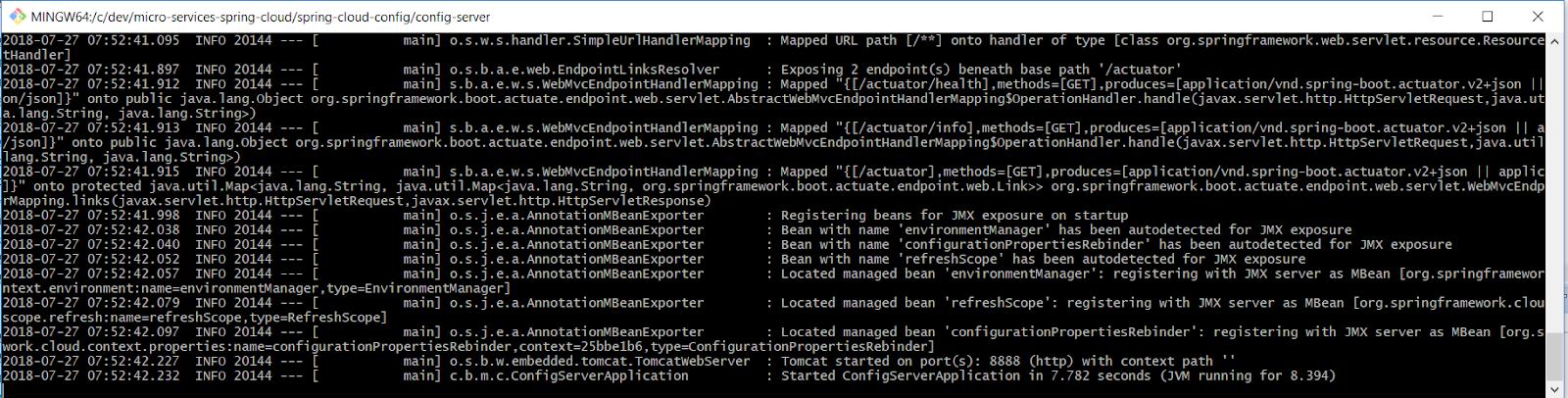 Cloud Config Service Startup Port 8888