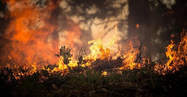 O fogo está intenso nesse local...