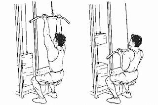 برنامج تمارين كمال الأجسام 5 أيام مقسم لعضلة واحدة في اليوم