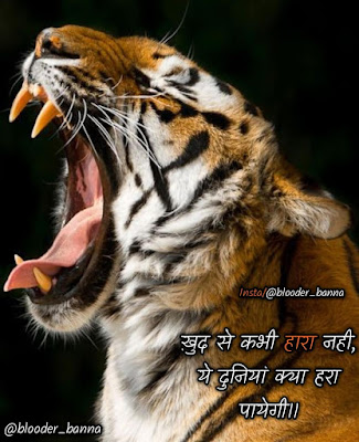 Rajput Status Video With Quotes Download for whatsapp