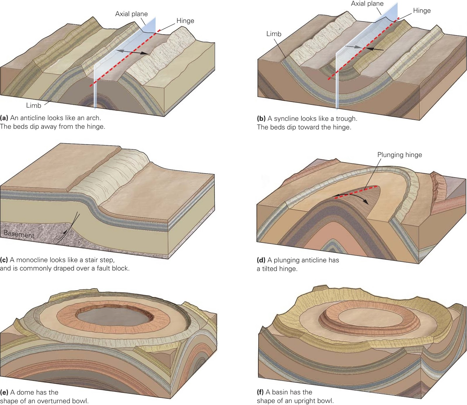 Folds and Foliations ~ Learning Geology - photo#34