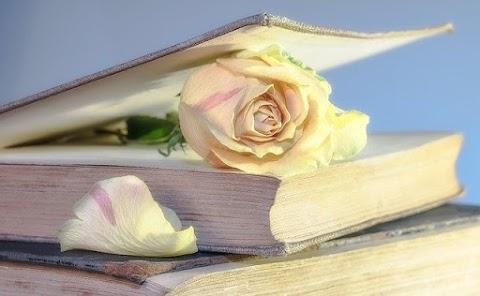 Puisi Cinta Penuh makna