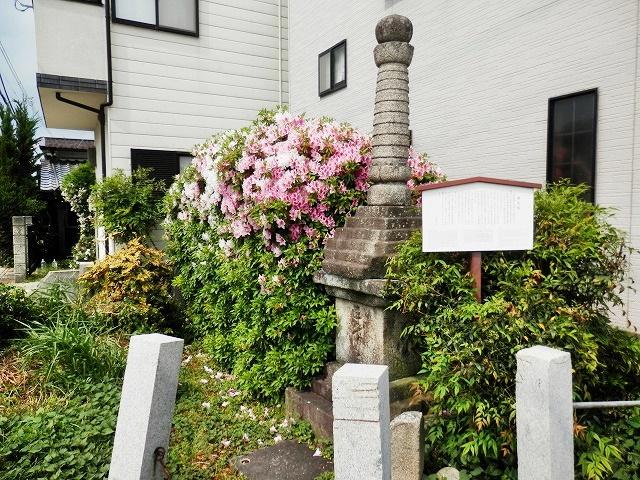 徒然なるままに 京都: 近所の歴...