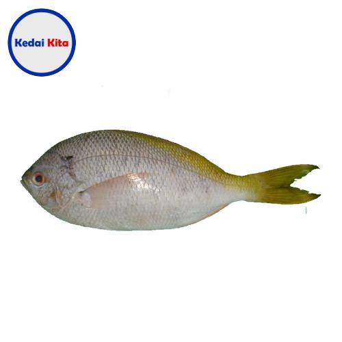 Ikan Biji Nangka 500 Gram