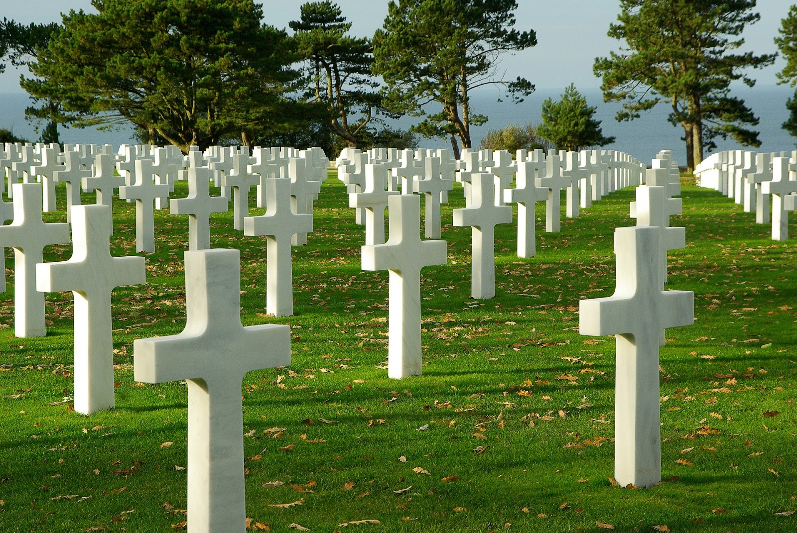several rows of white cross graves to illustrate a blog post about the anniversary of d-day