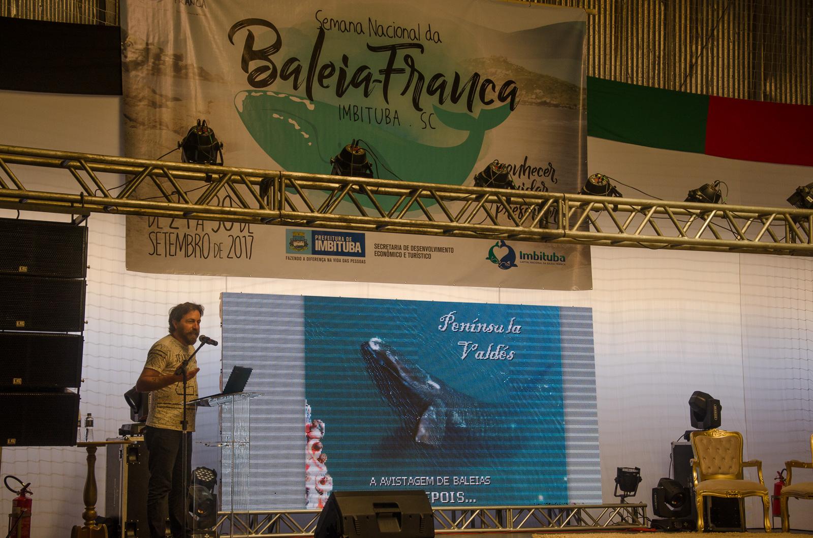 Semana de la ballena franca, encuentro en Brasil y profesionales de  Península Valdes