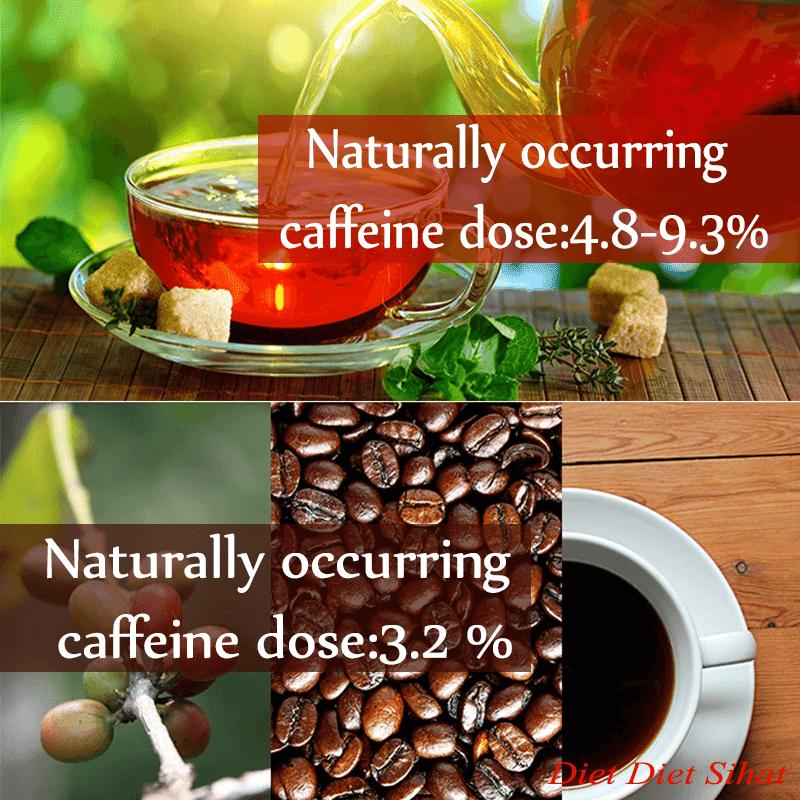 kafein bahaya