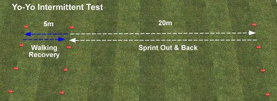 What is the Yo-Yo Test in Cricket?