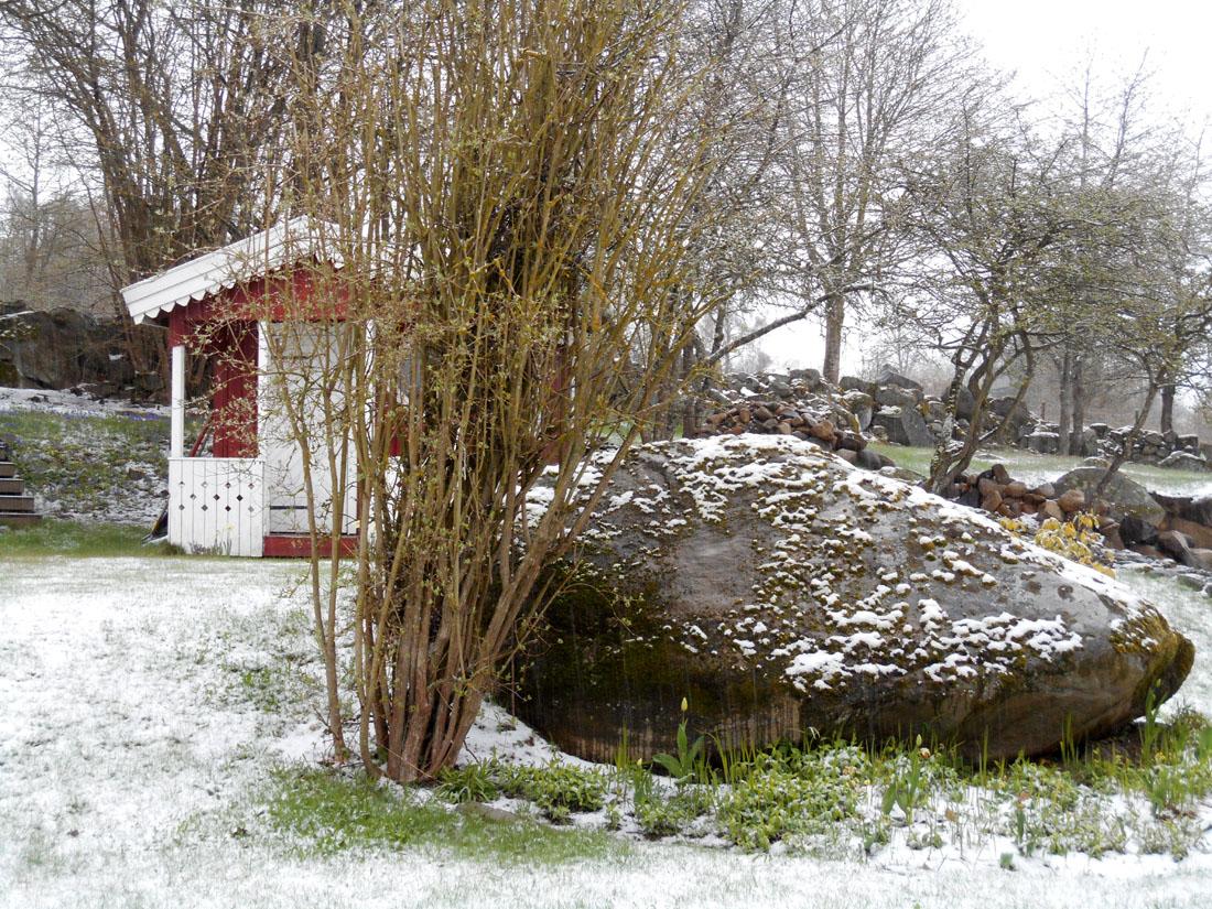 Nevicata del 24 aprile 2016