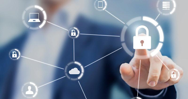 سياسة الخصوصية – Privacy Policy