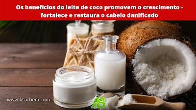 Você sabia que o leite de coco tem vários benefícios para o cabelo?