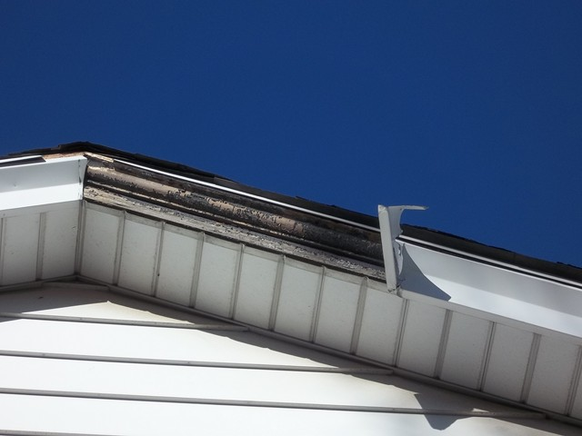 Metal Fascia Repair - HAMDEN CT | BID2WORK
