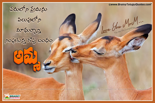 Here is mother quotes in telugu,mother quotes in telugu,mother quotes in telugu,mother quotes from daughter,mother quotes from son,mother love quotes,mother birthday quotes,being a mother quotes,Searches related to amma quotes in telugu,amma qotes in telugu,messages about amma in telugu,Best Telugu Quotes about mother,Amma kavitalu telugulo,Telugu Best Heart Touching Mother's Love Quotations with Nice Images,Mother's Love Quotes In Telugu With Pictures,Best quotes on mother in Telugu,Mother's Day Telugu wishes,quotes Telugu Poems,Top Telugu Amma Quotes and kavithalu, Best Telugu Quotations on Mother, Nice Telugu Mother Sentiment Messages online, Inspirational Telugu Amma Kavithalu, Cool Telugu Mother love Poems, Telugu Whatsapp Mother Images, Nice Telugu Mother's Love Poems and Messages. Beautiful Telugu Language mother and Child Quotes images, Indian mother and child images.