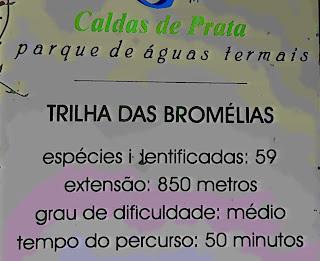 Trilha das Bromélias, Nova Prata