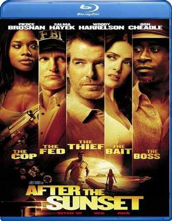 After The Sunset (2004) Dual Audio Hindi 480p BluRay 300MB ESubs
