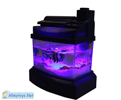 Tiny Fish Tanks 1
