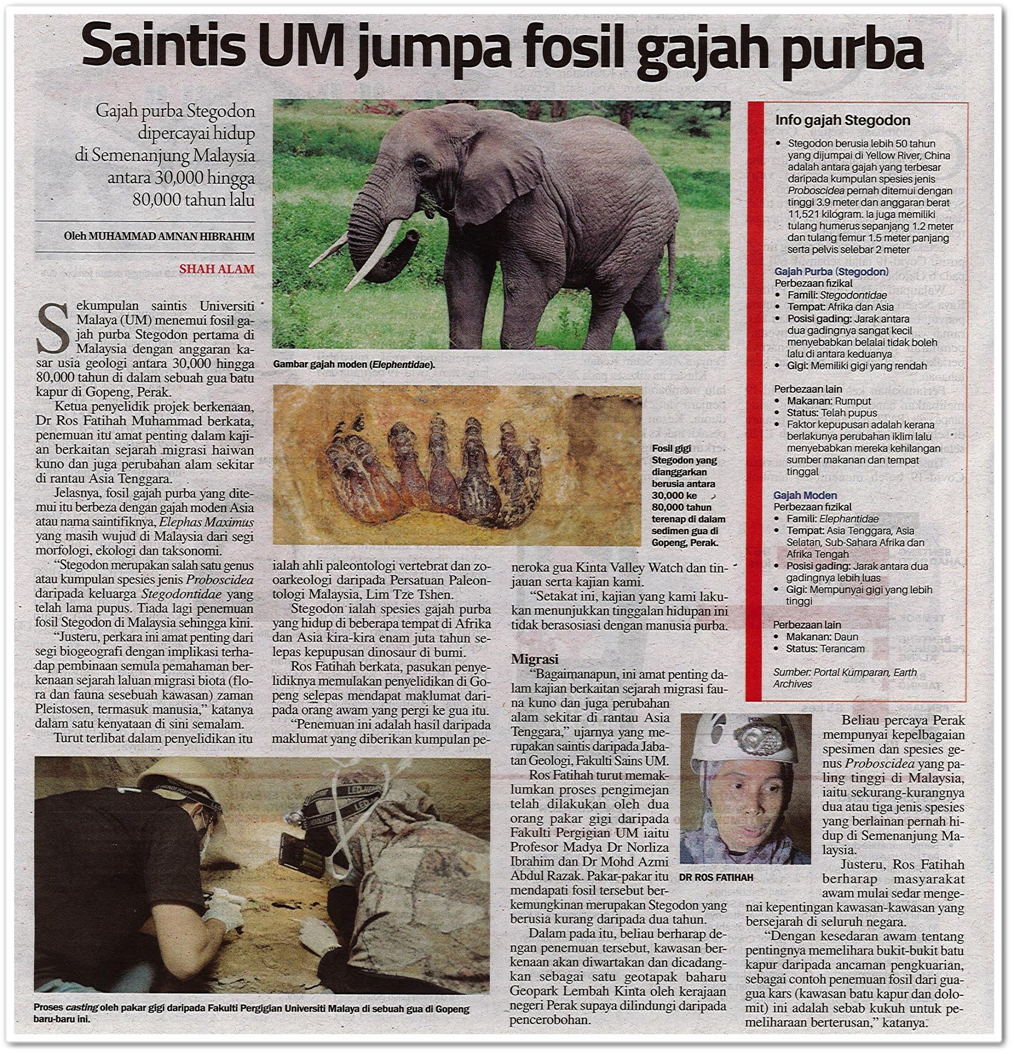 Saintis UM jumpa fosil gajah purba - Keratan akhbar Sinar Harian 10 Oktober 2020