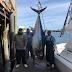 Discovery estreia a série Na Linha da Pesca