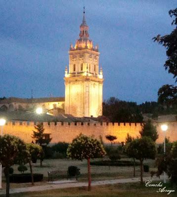 El paseo del rio de noche es otra de las bellezas de esta localidad, con esos jardines tan bien cuidados, los bancos para descansar y la torre de la catedral vigilandolo todo.