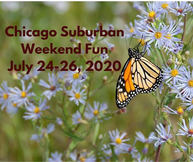 Weekend Windup: 12 Family Fun Ideas in the Chicago Suburbs and Nearby for July 24-26, 2020
