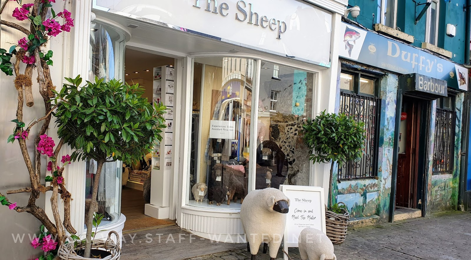 Shopfront of The Sheep, and also Duffys hunting and fishing shop, suppliers of Barbour jackets