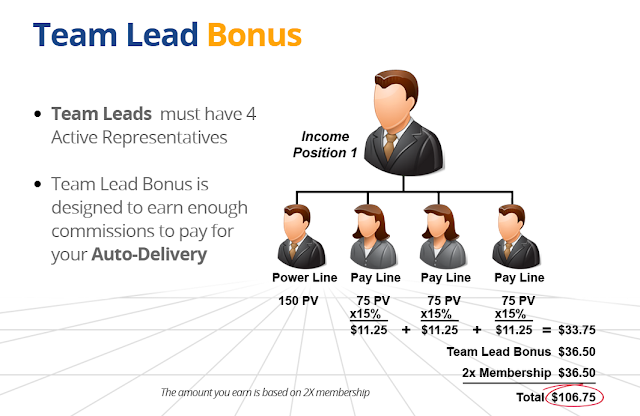 Team Lead Bonus