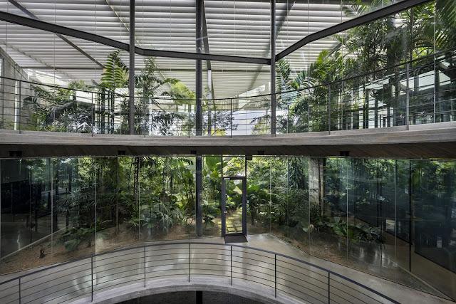 pisos de oficinas superiores con plantas al interior