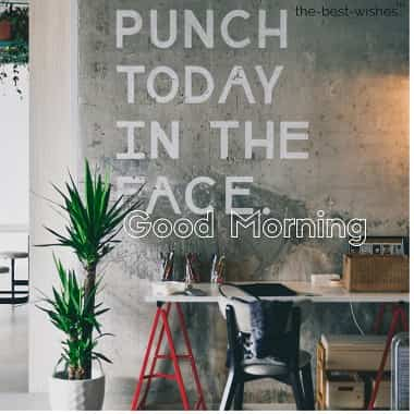 good morning quotes for brother punch today in the face