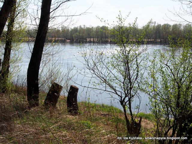 legi, wisla, nad rzeka, warszawa, spacer, wycieczka, piekny dzien, na grzyby, grzybobranie, laka na wisla
