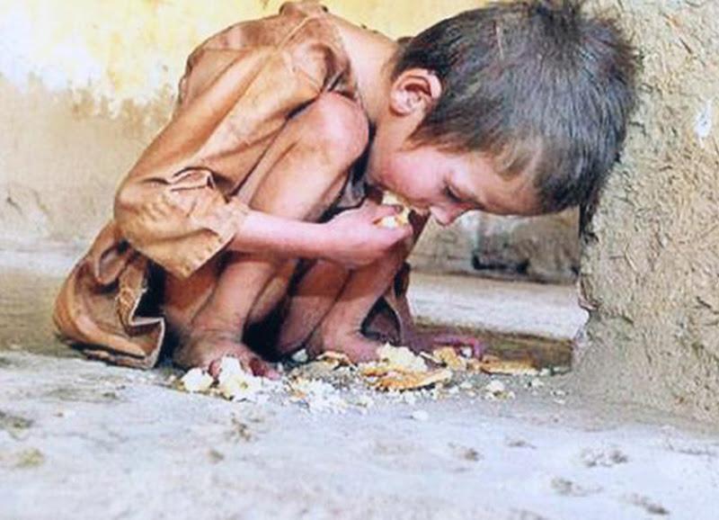 Qual sua escolha? Enfrentar um vírus tratável ou esperar a fome bater na sua porta